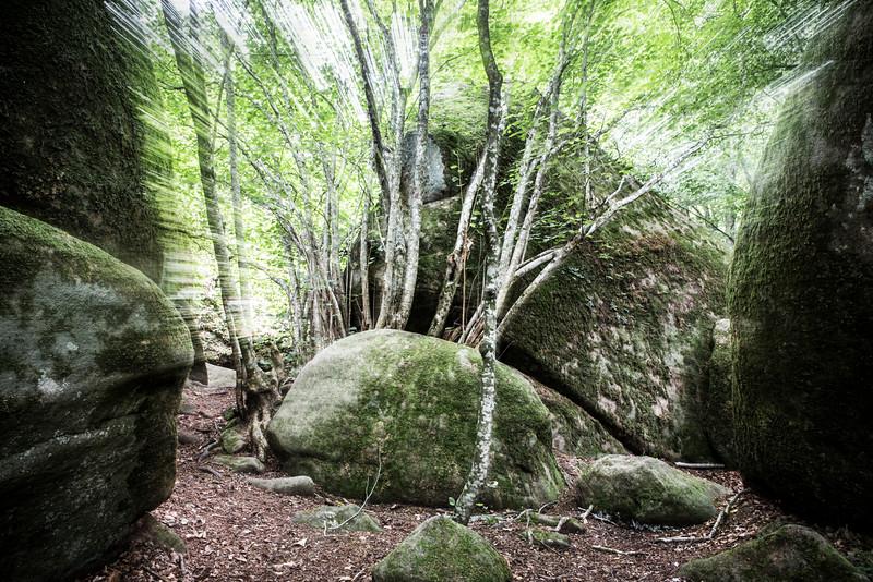 Breaking Rocks (Enchanted Rocks, Catalonia)