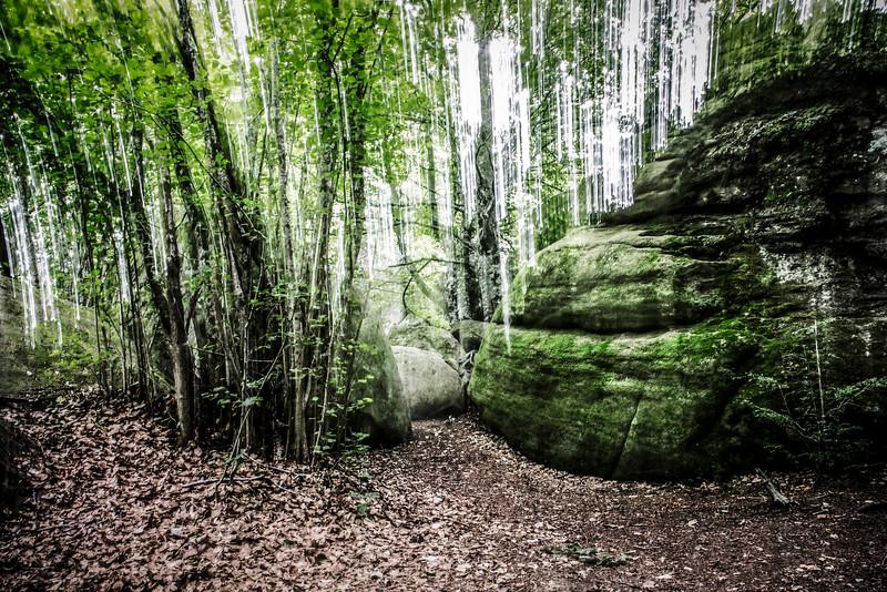 Stones and Trees (Enchanted Rocks, Catalonia)