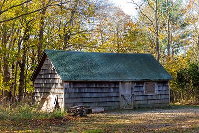 Blydenburgh Park LI. NY. 11/2014