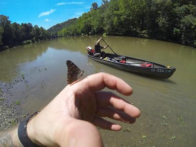 Tygart River - 8-10-13