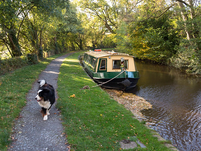2014 wales canal (7)