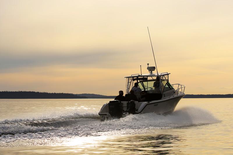Pursuite Boat, Chuckanut Bay, Bellingham, Washington