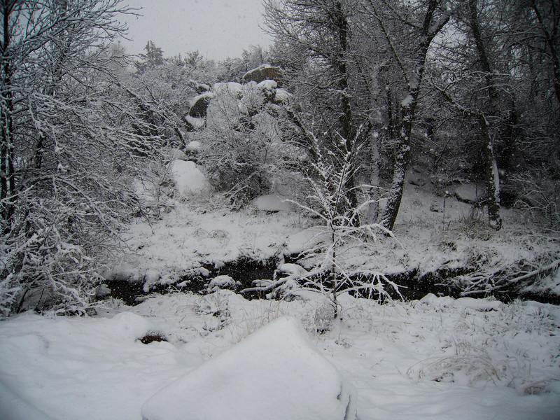 Snow at the Creek