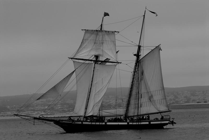 Lynx Tall Ship