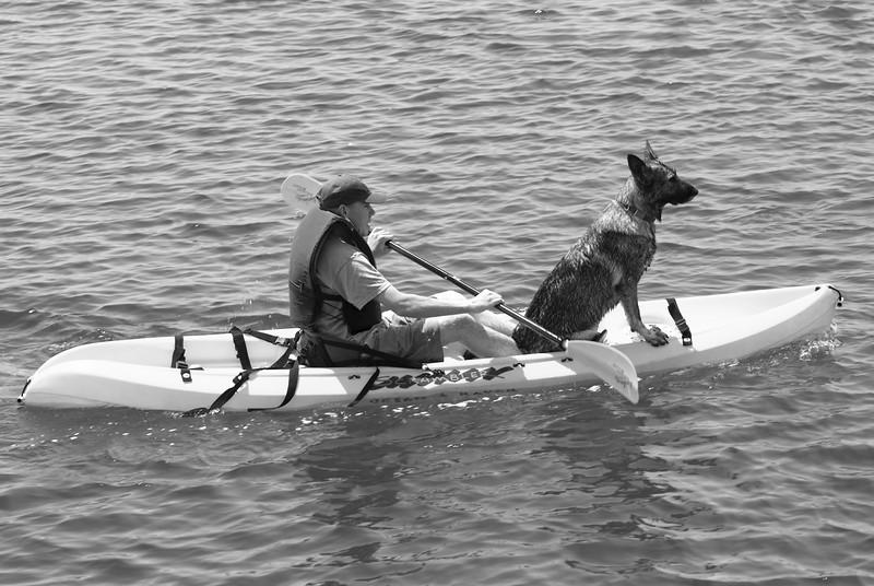 Kayaker & Dog