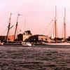 Newburyport  - Pride of Baltimore & Spirit of Massachusetts  © Alan Mela