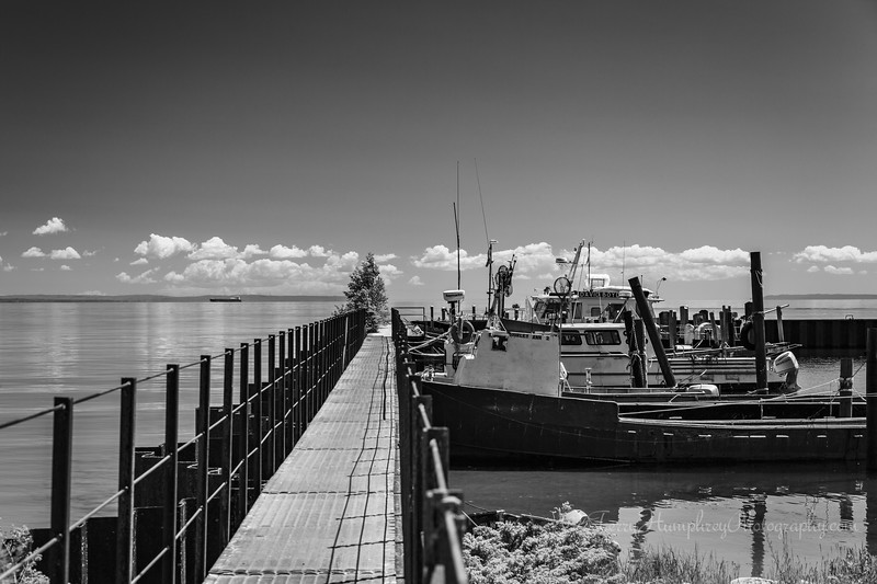 Whitefish Point Harbor II