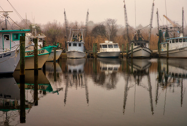 Apalachicola Shrimp Boats