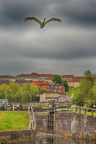 Maryhill Locks, Glasgow