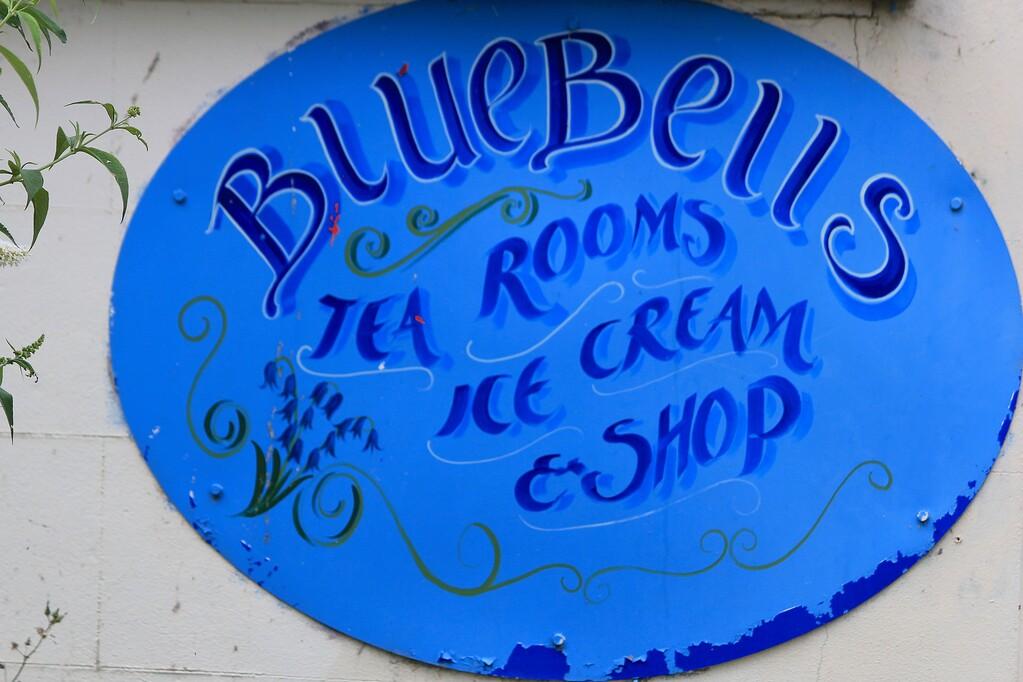 Bluebells Marsworth