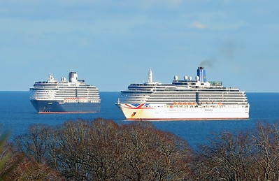 Oosterdam and Arcadia in Torbay