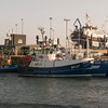 fishing boat in Peterhead harbour