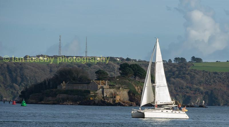 A catamaran sails sedately up the river Tamar at Cremyll