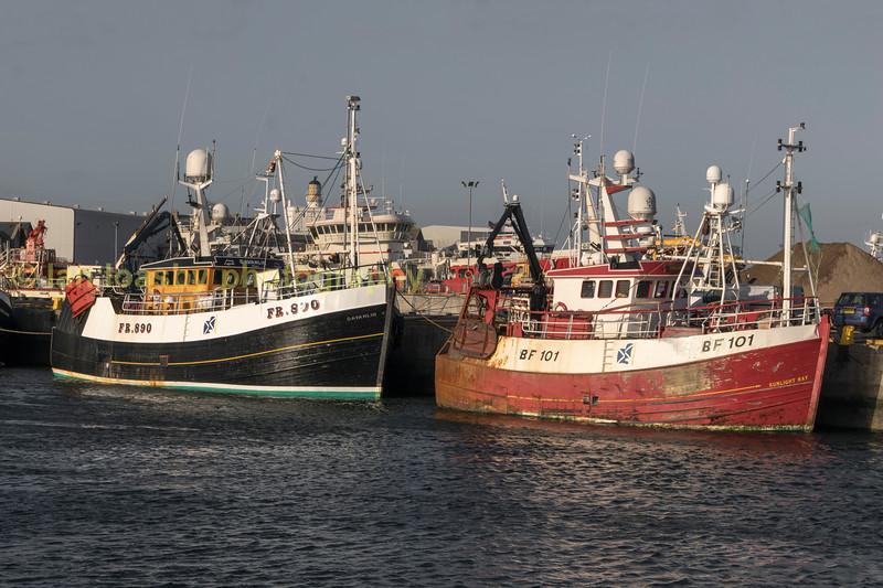 fishing boats in peterhead harbour