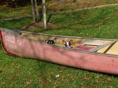 2005 - Canoe