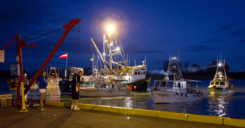 "Watching the gillnetters return to Steveston Harbour to unload thier catch of sockeye salmon. The seiner ""Pacifica"" acts as the packer boat.<br /> Richmond, British Columbia, Canada<br /> This shot was taken at iso 3200 and was a tad underexposed - making the picture very noisy."