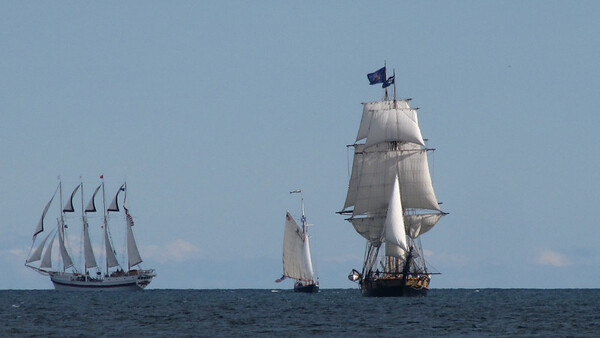 Windy, Hindu & Flagship Niagara