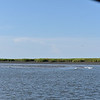 4 Way at Clubbs Creek and Plantation Creek 07-24-16