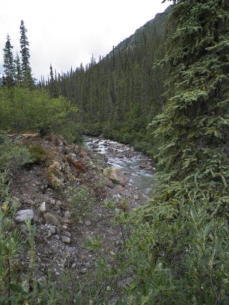 Day 6, Hike - Arrigetch Creek