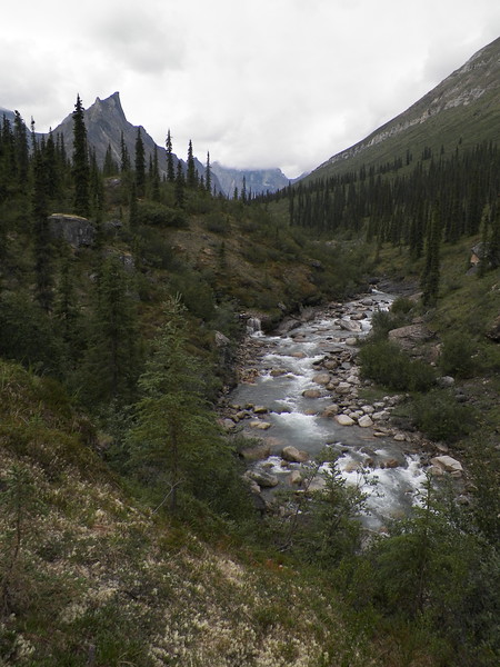 Day 6, Hike - Arrigetch Creek