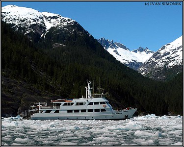 """NAUTILUS EXPLORER#2"",LeConte Bay,Alaska,USA."
