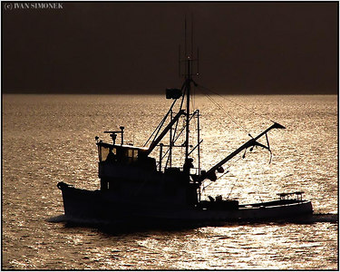 """F/V RELENTLESS"", Wrangell, Alaska, USA."