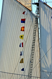 Windjammer Days, Boothbay Harbor, Maine 2008