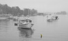 Lobster boats in harbor shrouded in fog, study in black and white with single yellow bouy, Boothbay Harbor, Linekin Bay, Maine