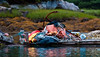 """colorful pile of fishing gear, nets, floats, line and a rusted anchor, Phippsburg, Maine, Small Point Harbor, The Branch  For more Phippsburg, Maine historical information visit <a href=""""https://www.facebook.com/pages/Phippsburg-History-Center/114338978642314"""">https://www.facebook.com/pages/Phippsburg-History-Center/114338978642314</a>"""