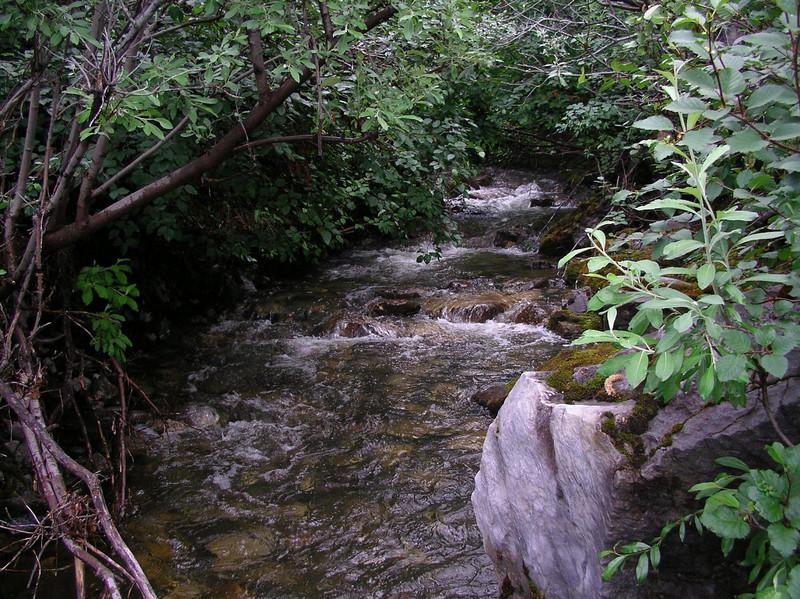 one of many side streams feeding the main river