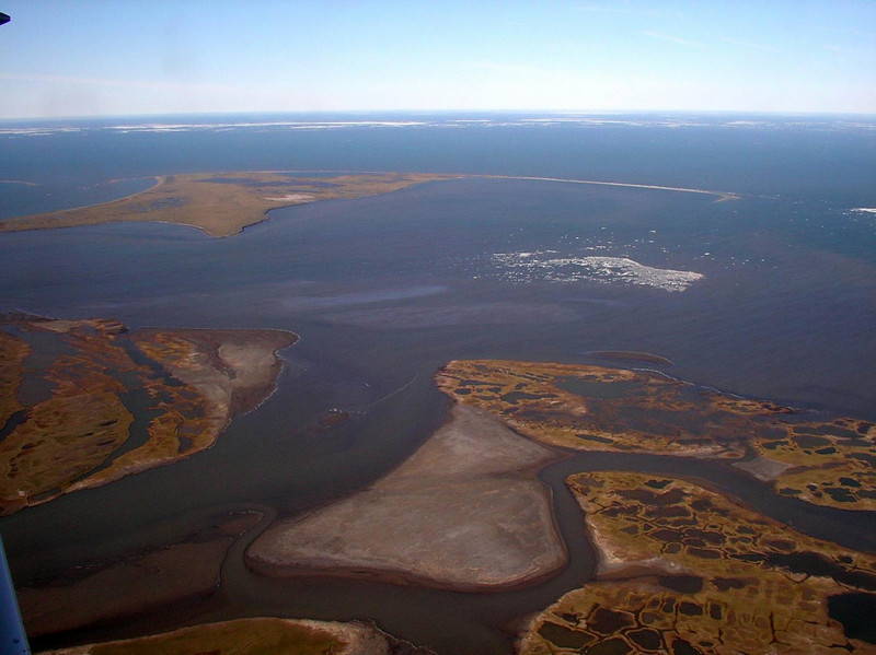 river delta on the arctic.