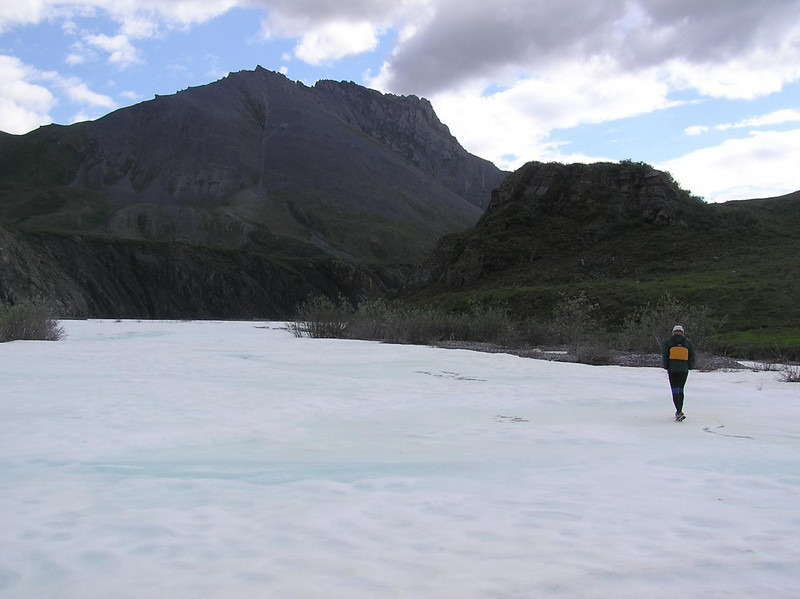 Kent wanders off across the ice.