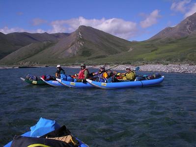 Kongakut River Bear Chase 2008 Full Show