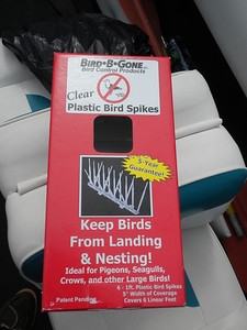 I bought these clear plastic bird spikes to keep the heron off the bimini.