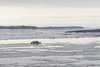 Taxi boat on the Moose River at Moosonee 2016 December 6th.