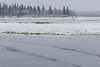 Taxi boat comes from Moose Factory to pick up people and potato chips. Trail in slush.