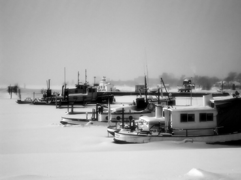 Tugs in Winter.