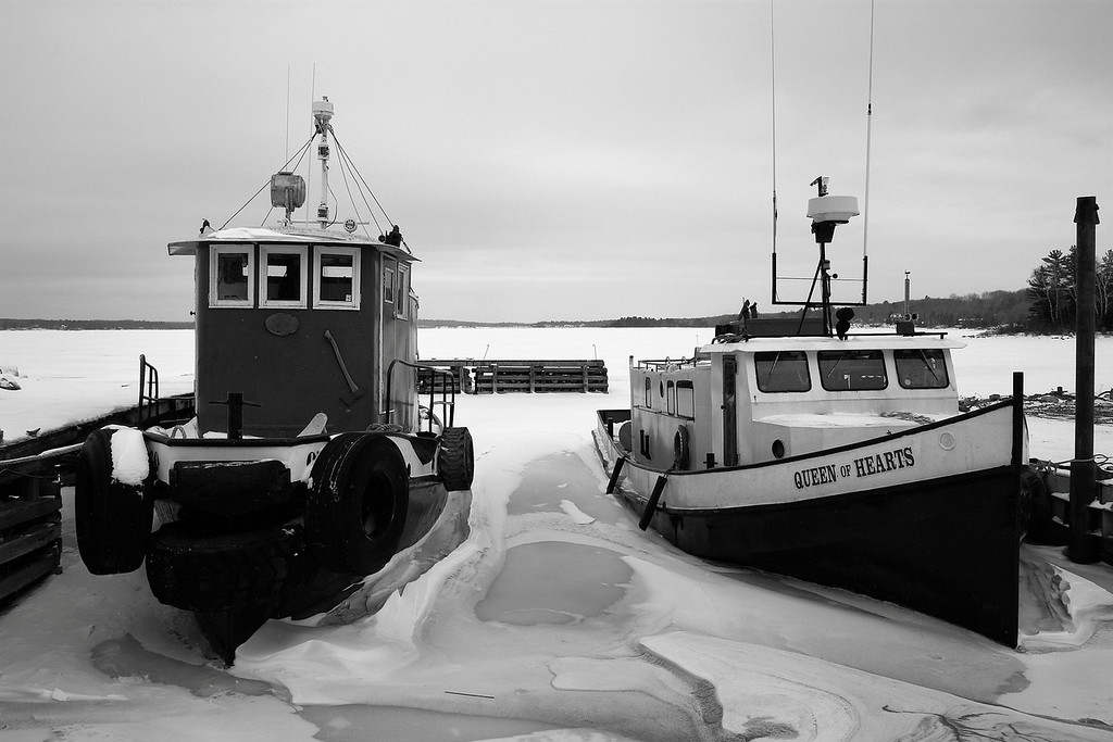 Tugs at Richards Landing