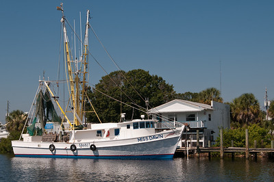 Tarpon Springs Oct 2010