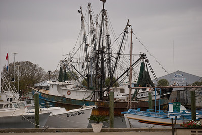 Sponge Docks Tarpon Springs Feb 2008