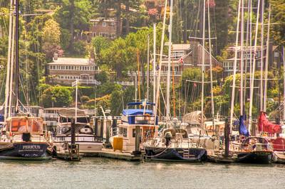 belvedere-marina-boats-2