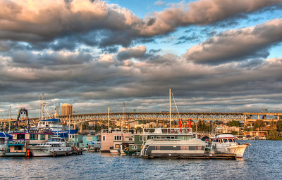 lake-union-boats