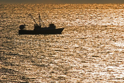 Fishing Boat at Sunset - 1/1/07