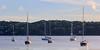 Boats anchored in Glen Cove Harbor.