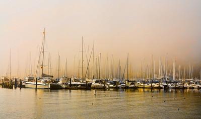 foggy-marina-boats