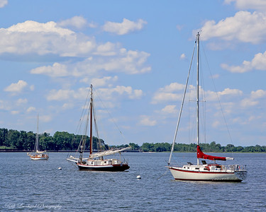 The Christeen Oyster boat anchored in Oyster Bay Harbor. The Christeen is the one in the middle.