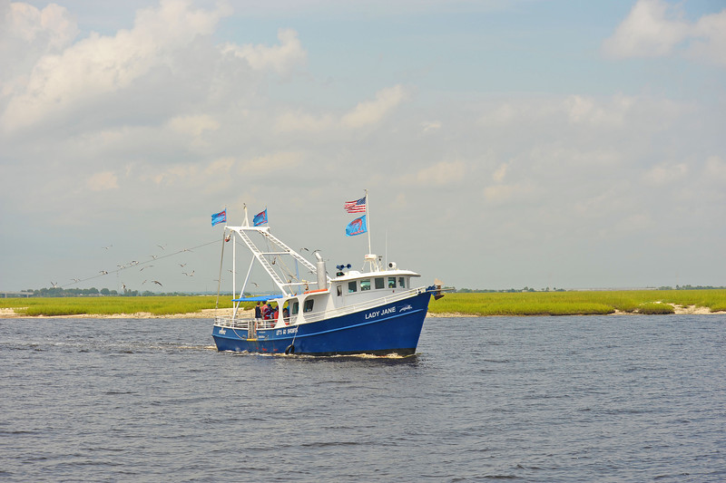 Lady Jane as seen by the Capt Gabby of SouthEast Adventure Outfitters on 08/31/13