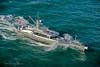 Sea trials 2005, New Zealand