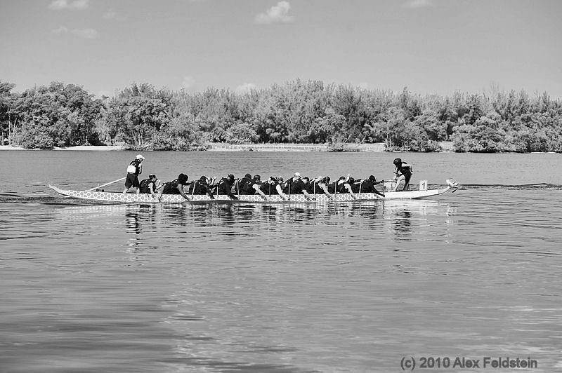 2010 Dragon boat races