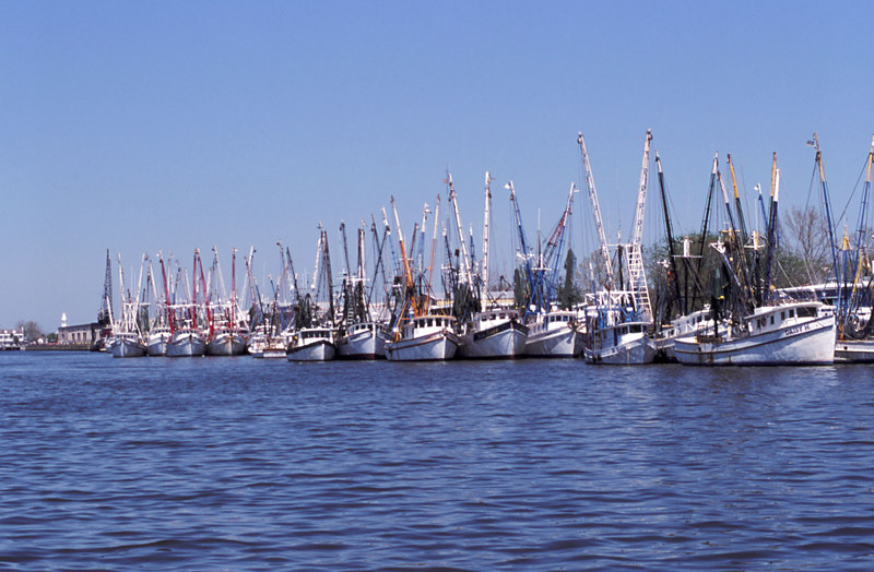 Shrimp Boats in the East River in Downtown Brunswick, Georgia